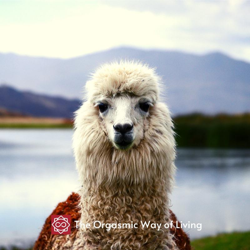 viaggiare in Perù cosa esplorare