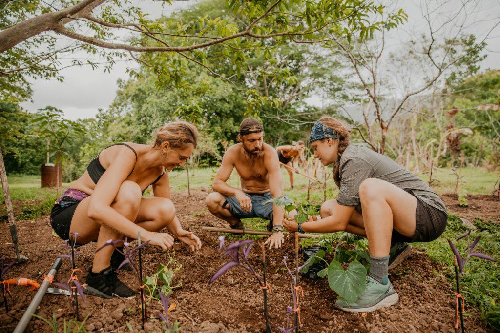 ecovillaggi sostenibilitá ambientale